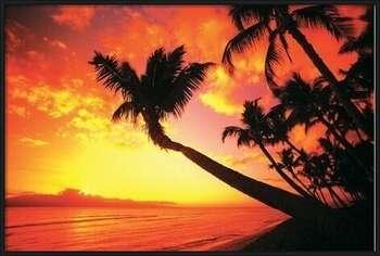Hawaiin Sunset II Uokvirjen plakat