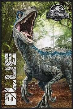 Uokvirjen plakat Jurassic World Fallen Kingdom - Blue