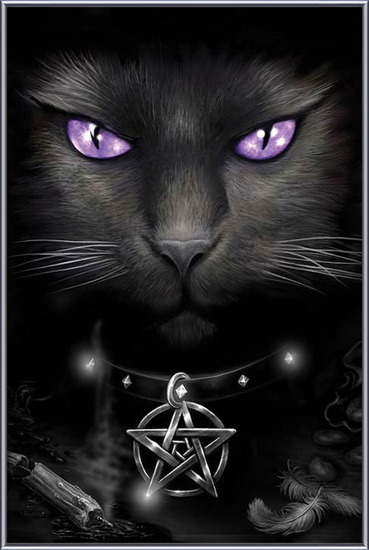 Magical cat Uokvirjen plakat