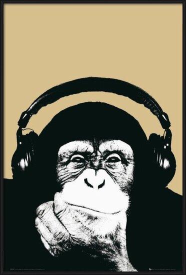 Steez - monkey Poster